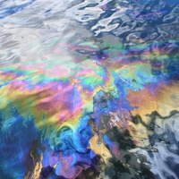 This oil-eating bacterium could help clean up ocean spills