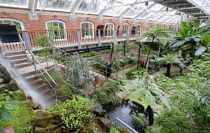 Tropical Ravine reopens after £3.8 million restoration