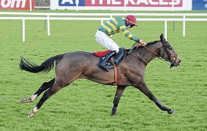 Anibale Fly can claim Grand National glory