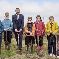 13,000 trees to transform Co Derry landfill site into woodland