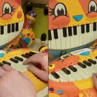 This man played a Lord Of The Rings song on a children's meowing keyboard and it's worth a listen