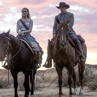 New on DVD and to download: Westworld Season 2, 13 Reasons Why, Kodachrome