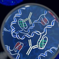 New DNA structure resembling a 'twisted knot' discovered in living human cells