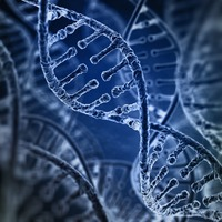 14 strange facts about your DNA