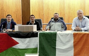 Padraig McShane challenging suspension over picture in council building with tricolour and Palestinian flag