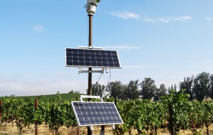 How robotic lasers are being used to protect wine crops from birds in California