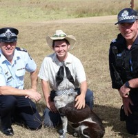 A dog who saved a three-year-old girl has been made an honorary canine officer