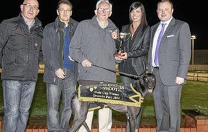 Greyhound world mourns passing of legendary Dessie Gilroy