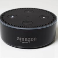 The best of Amazon's new Alexa kid skills