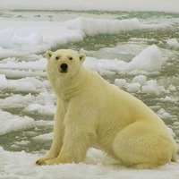 Global warming raises fears of extinction in Marine Protected Areas