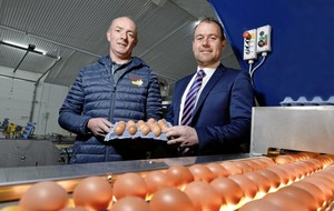 Cushendall free-range egg producer has it cracked with £300,000 investment in automation
