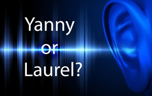 Yanny or laurel? Experts give their view on the puzzling audio clip
