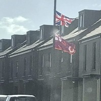PSNI 'spoke with' group removing UVF flags in Belfast