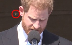 Harry unfazed by bothersome bee at palace garden party