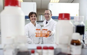 Belfast research firm doubling workforce to attract global business