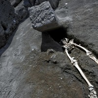 New Pompeii find shows man crushed trying to flee eruption