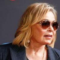 Roseanne Barr: I had taken sleeping pills before writing offensive tweet