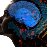 14 things people would like embedded in their memory