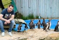 You muggin' me off? Danny Dyer to narrate hilarious penguin Love Island spoof