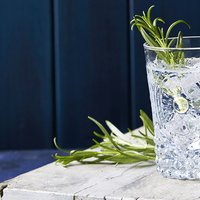 World Gin Day Saturday June 9