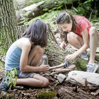 Forest Schools educating kids about the great outdoors