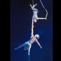 No clowning around for Newry physio who keeps Cirque du Soleil performers flying high