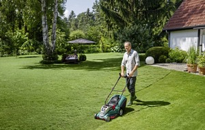 Gardening: Three essential tools to help keep your lawn looking good this summer