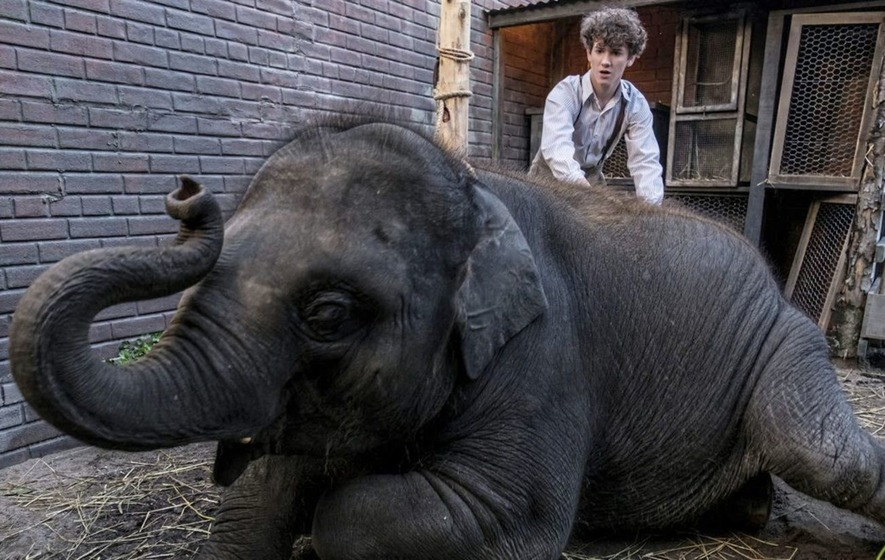 the zoo story script