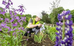 Award winning Ballymena gardener appointed as first 'Walled Garden Keeper' of Hillsborough Castle in centuries