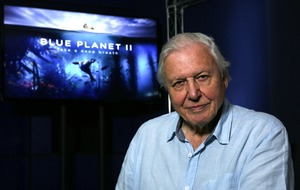 Sir David Attenborough: Response to Blue Planet II is beyond what I imagined