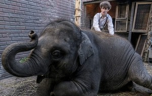PETA calls for people who 'care about animals' to boycott Zoo movie