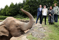 Belfast Zoo launches free shuttle bus in time for school holidays