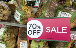Is it a good idea to buy plants on sale in garden centres at this time of year?
