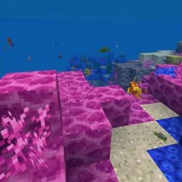 How Minecraft player creations are being used to help rebuild coral reefs