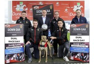 Down GAA sponsors annual July 12 dual race day at Dundalk Stadium