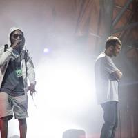 Rapper's fall cuts short Gorillaz set at Roskilde