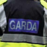 Gun seized and two arrested in anti-dissident raids