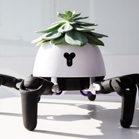 This little robot moves to keep your plants in optimal sunlight