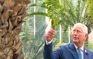 Prince of Wales shares climate change concerns on Gardeners' World