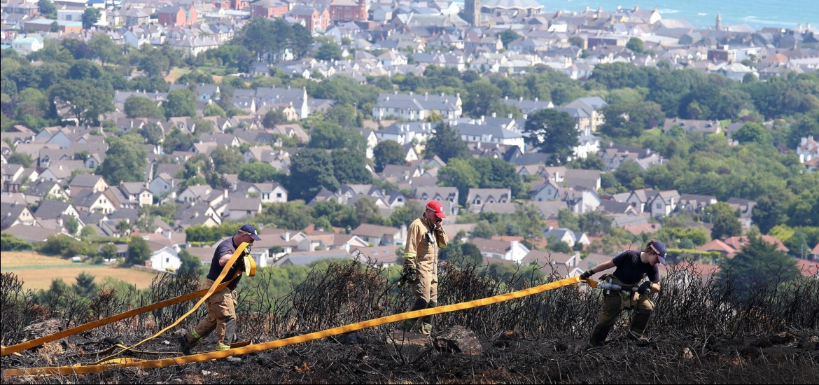 Firefighters tackle gorse fire