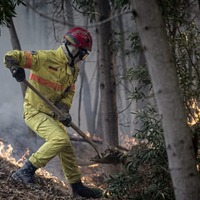 Portuguese firefighters tackle major wildfire on the south coast