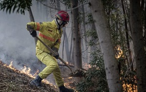 1,000 firefighters battle wildfires for fifth straight day