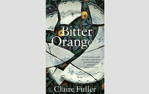 Book reviews: Bitter Orange proves Claire Fuller is a dazzling storyteller