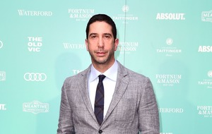 David Schwimmer set to star in Will & Grace as Debra Messing's love interest