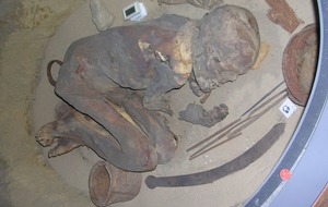 Ancient Egyptians' early mummy embalming 'recipe' revealed