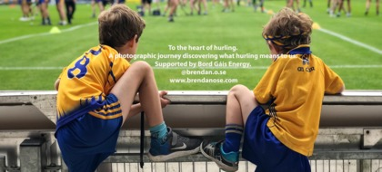 The Heart of Hurling by Brendan Ó Sé