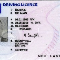 Motorists 'can have name on driving licence in Irish'