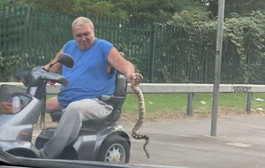 A man has been snapped on a mobility scooter clutching a snake