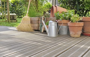 Gardening: end of season tidy-up tips