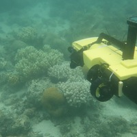 Underwater drones kill crown-of-thorns starfish to protect Great Barrier Reef